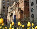 Christ Church NYC in New York,NY 10065