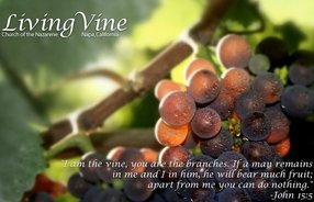 Napa Living Vine Church of the Nazarene in Napa,CA 94558