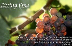 Napa Living Vine Church of the Nazarene