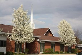 Holy Cross Lutheran Church in Wheaton,IL 60187