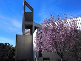 Mt. Carmel Lutheran Church
