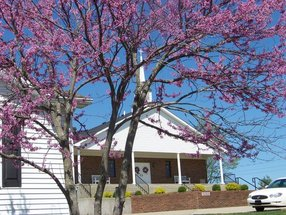 Mill Creek Baptist Church in Bardstown,KY 40004