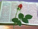 Apostolic Revival Tabernacle