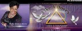 Like A Doves Fellowship