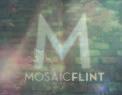 Mosaic Flint